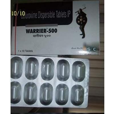 Warrior 500