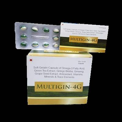 MULTIGIN 4G